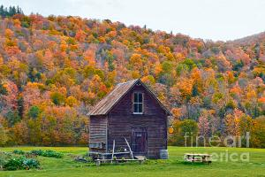 Vermont Garden Shed in Autumn.